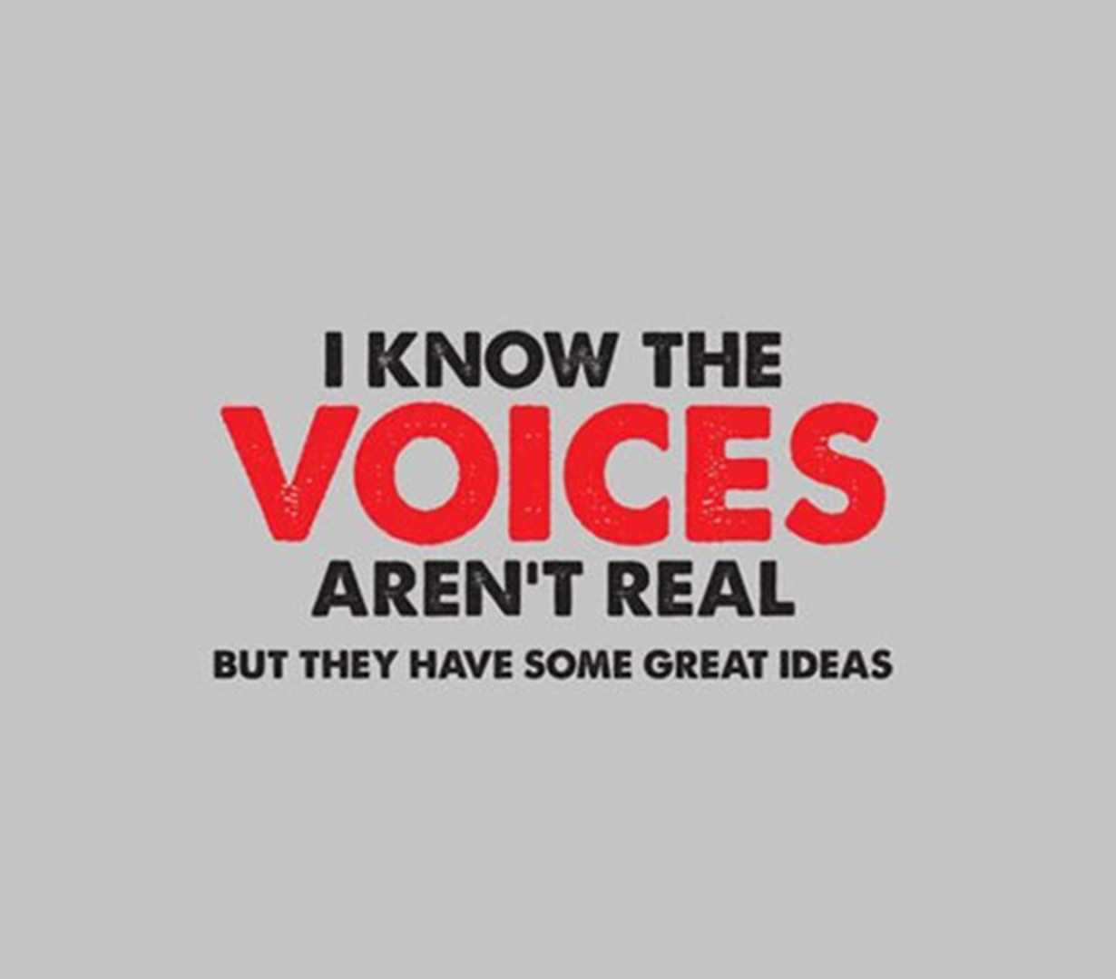 I-know-the-voices-arent-real