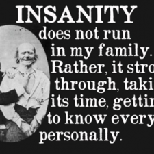 insanity+to