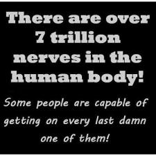 nerves+bp