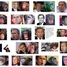 bush_chimps2