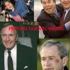 bush_darwin1